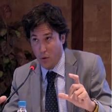 Javier Villegas Flores