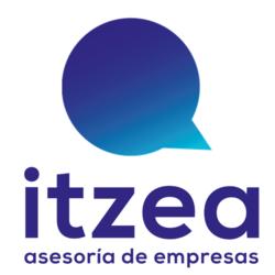 Itzea, Asesoría de empresas