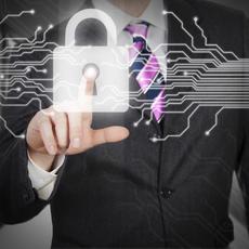 ¿Qué Tareas Están Designadas Para El Delegado De Protección De Datos?