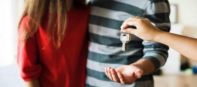 ¿Cuáles son los cambios introducidos por el nuevo Real Decreto-ley en materia de vivienda y alquiler?