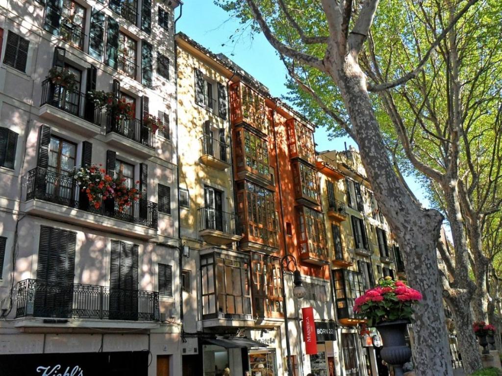 Las 5 novedades que introducía el Real Decreto sobre alquiler de vivienda