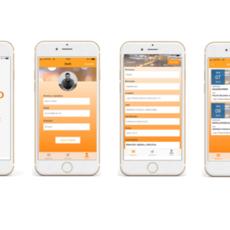 Indispensables en tu móvil: Inddubio lanza su nueva App Juzgados