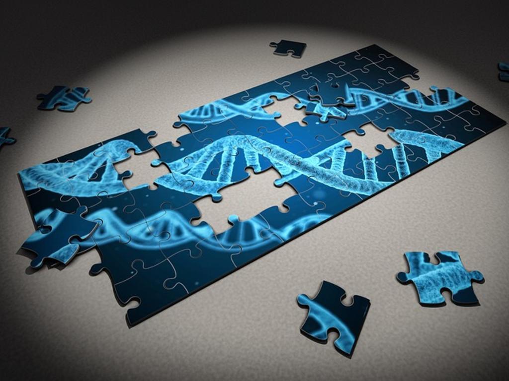 Las muestras de ADN en el procedimiento penal