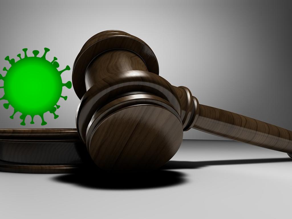 La incidencia en los procesos judiciales del estado de alarma por el Covid-19
