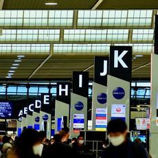Las aerolíneas no devuelven el dinero: más de 100 viajeros reclaman cada día el reembolso de su billete