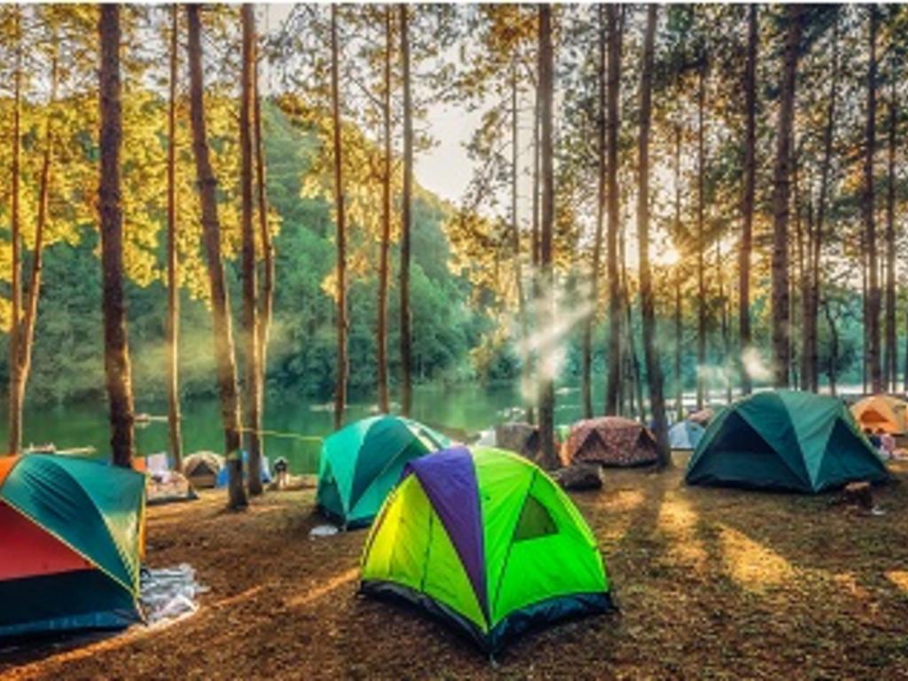 """Los campamentos de verano en la """"nueva normalidad"""""""