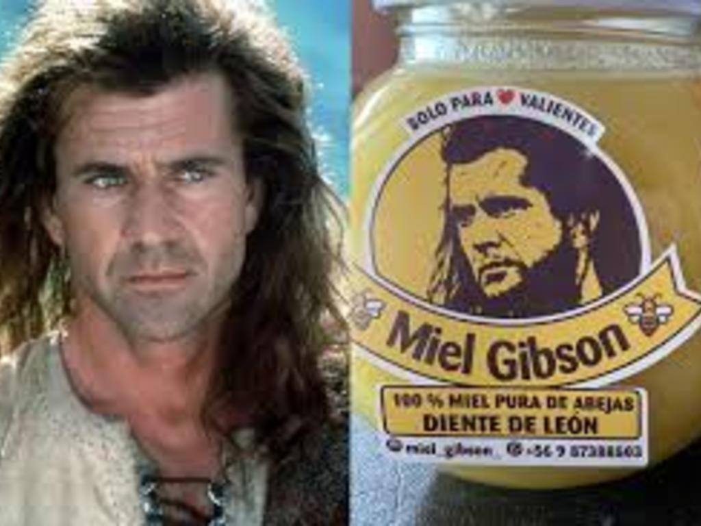 """Abogada de """"Miel Gibson"""" aborda el eje comunicacional del controvertido caso"""