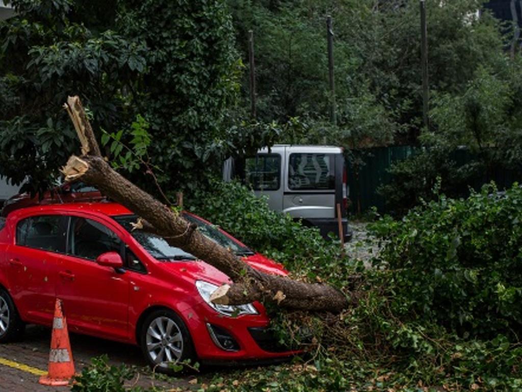 ¿Qué cubre el seguro en el caso de daños por mal tiempo, como vendavales?