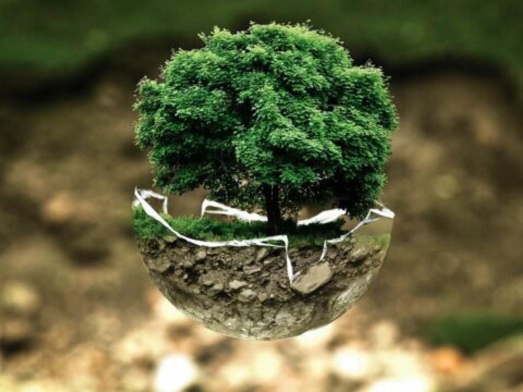Cambio climático: ¿Qué pueden hacer las aseguradoras?