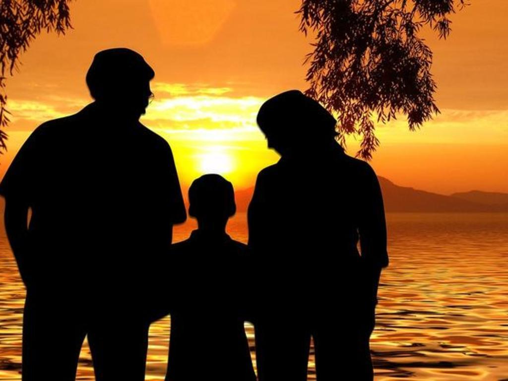 Adopción nacional e internacional en España:  fases del proceso
