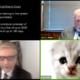 ¿Sabes cómo manejar los filtros de zoom y evitar ser un gato? Como evitar incidentes en los juicios telemáticos