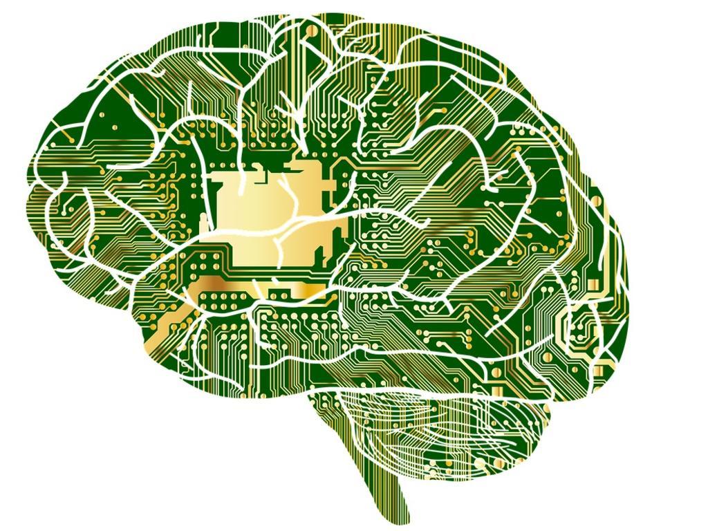 ¿Por qué importa la neurociencia al derecho?