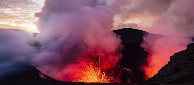 ¿Cubre el seguro los daños del volcán de La Palma en cultivos y explotaciones ganaderas?