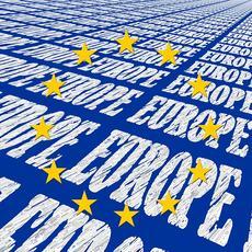 Aplicación de la Carta de los Derechos Fundamentales en la UE en 2016