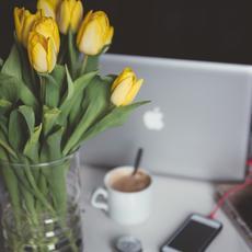 Tres consejos antes de buscar el amor por internet
