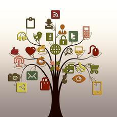 Las redes sociales deben esforzarse en cumplir plenamente las normas de la UE en materia de consumo